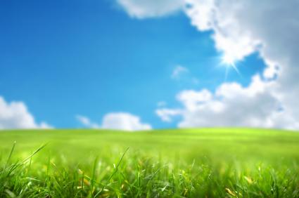 Plantarsano: sanifica i plantari con l'ozono